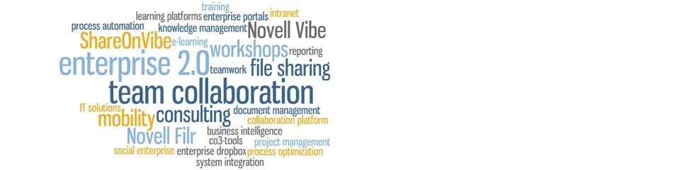 Collaboration mit Novell Vibe